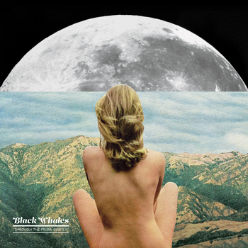 Black Whales - Through the Prism, Gently (2014)