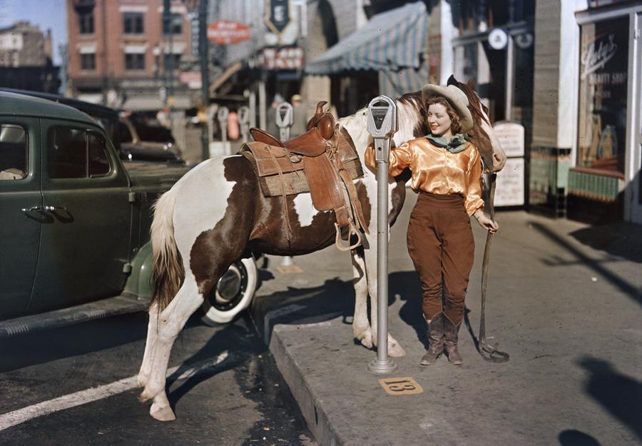 Parkendes Pferd