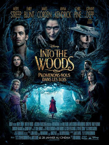 Into the Woods, Promenons-nous dans les bois 2014 [TRUEFRENCH] [DVDSCR-MD]