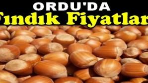 findik-fiyati-yeni-haftaya-artisla-basladi