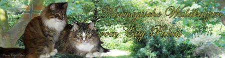 Gästebuch Banner - verlinkt mit http://vomcitypalais.de/
