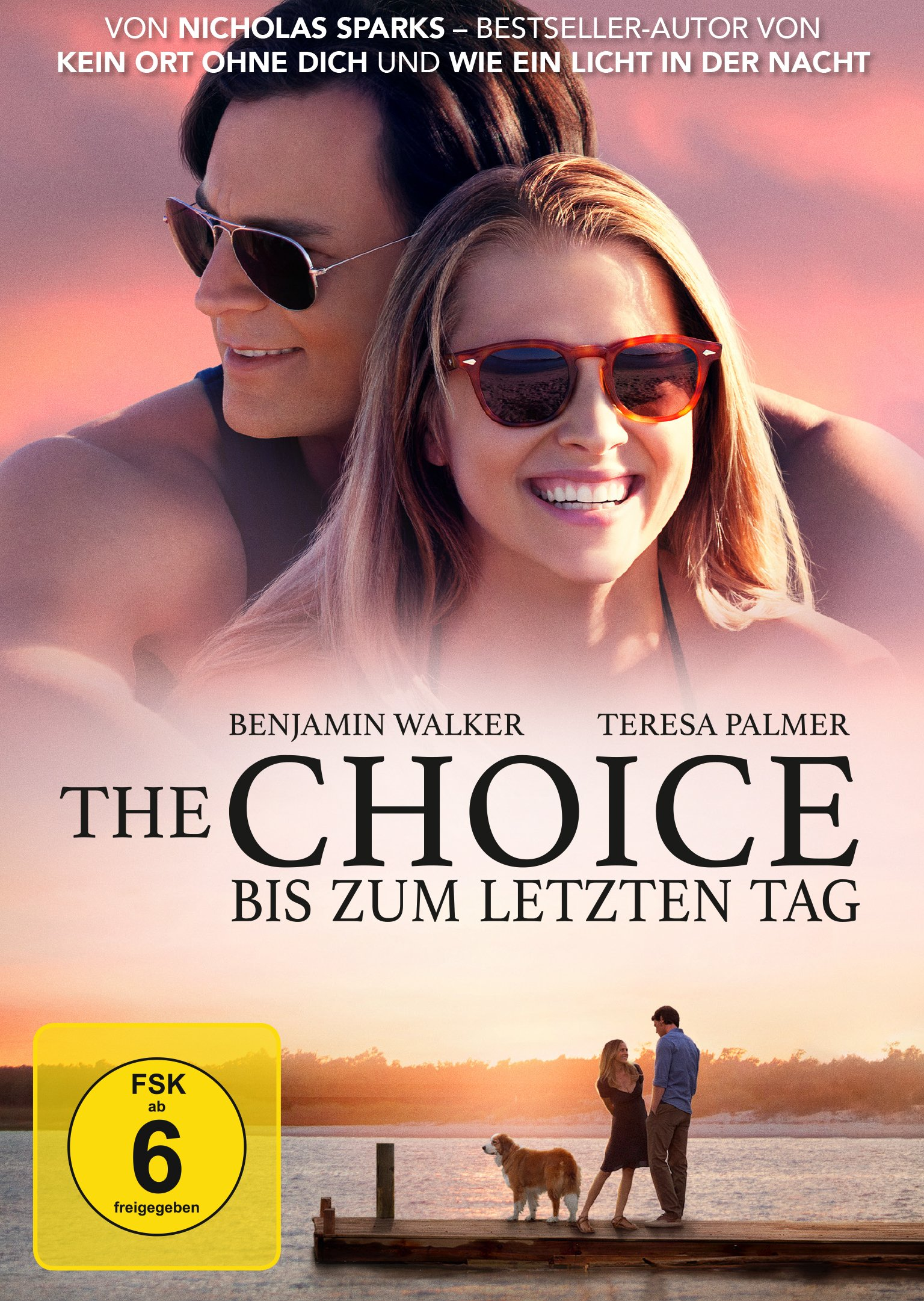 : The Choice Bis zum letzten Tag German 2016 BdriP x264-CiNeviSiOn
