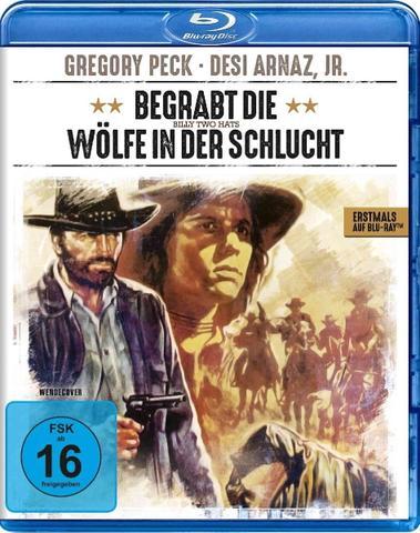 download Begrabt.die.Woelfe.in.der.Schlucht.1974.German.DL.1080p.BluRay.x264-SPiCY