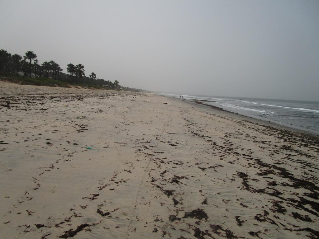 Urlaub Gambia 2017 - Nr. 2 69k84se8