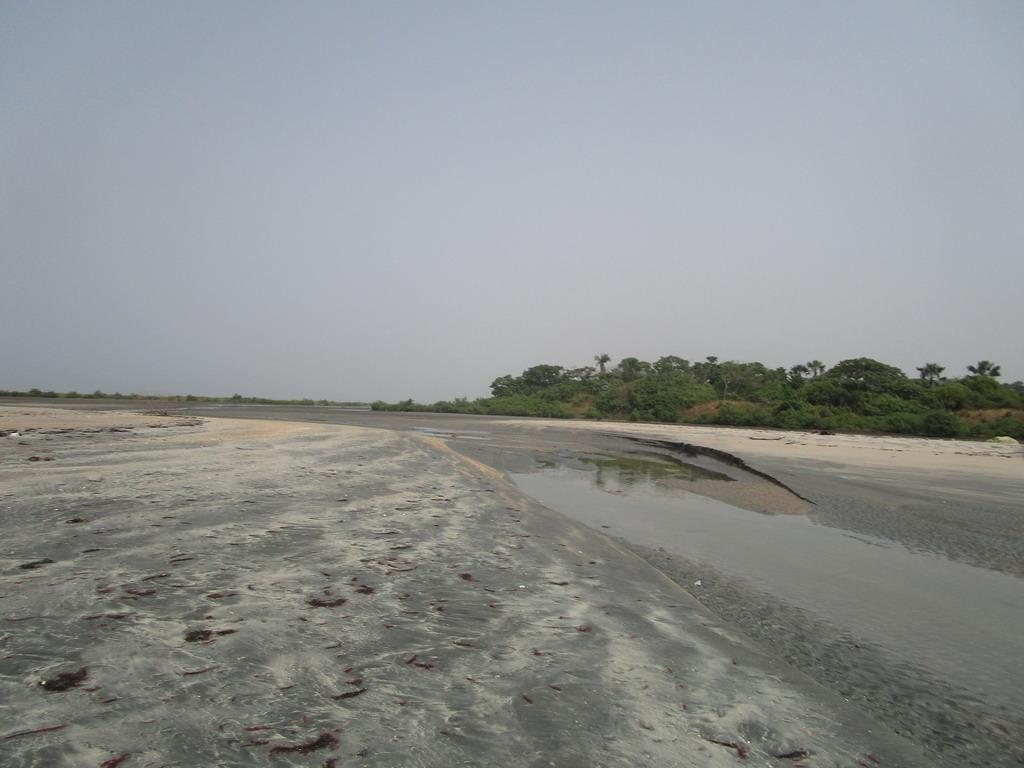 Urlaub Gambia 2017 - Nr. 2 Cptbgkrk