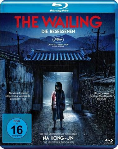 download The Wailing: Die Besessenen (2016)