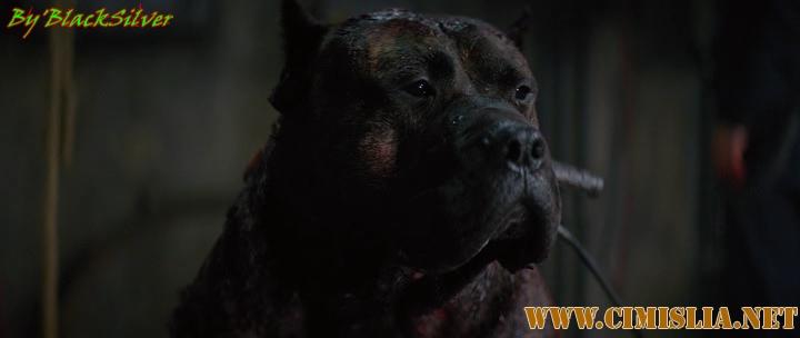 Цепной пёс / Bullet Head [2017 / BDRip]
