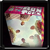 The Box Tops - The Letter Neon Rainbow 1697