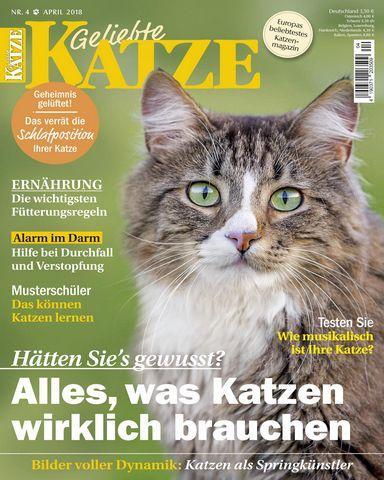 : Geliebte Katze April 2018