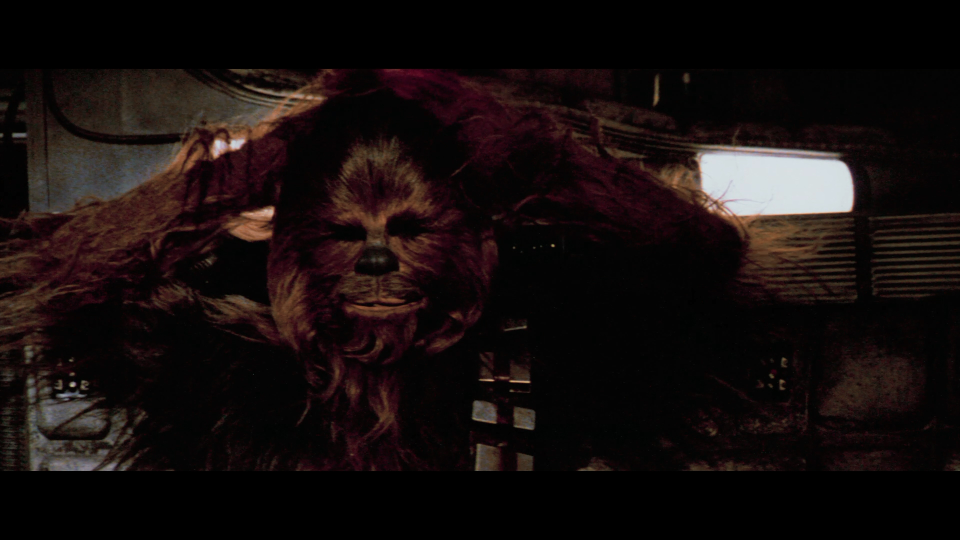 Chewbacca, too red in 4K77 Test Encode