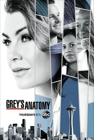 download Greys.Anatomy.S14E09.Ausgeliefert.GERMAN.DUBBED.WebHDRiP.x264-SOF