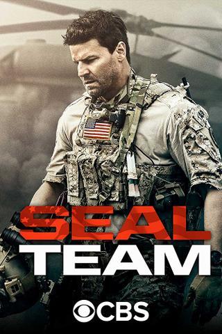 download Seal Team S01E19