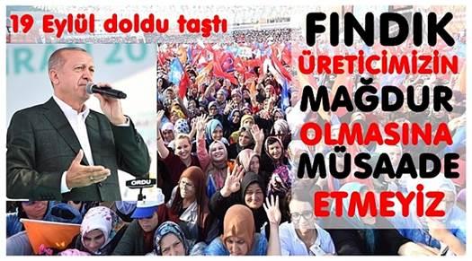 FLAŞ HABER! FINDIK ÜRETİCİSİNE REİS SÖZÜ