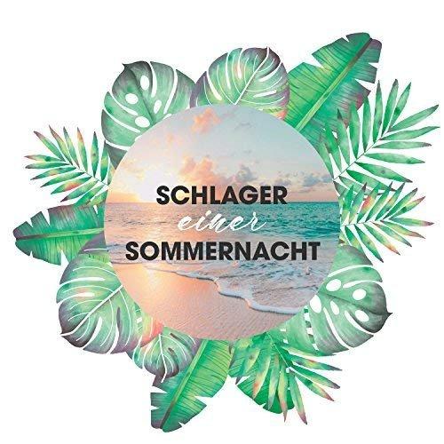 download Schlager.einer.Sommernacht.(2018)
