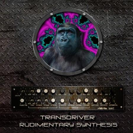 Transdriver - Rudimentary Synthesis (2018)