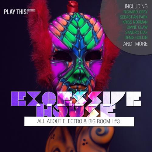 Excessive House Vol 3 (All About Electro and Big R ...