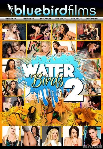 download Waterbirds 2