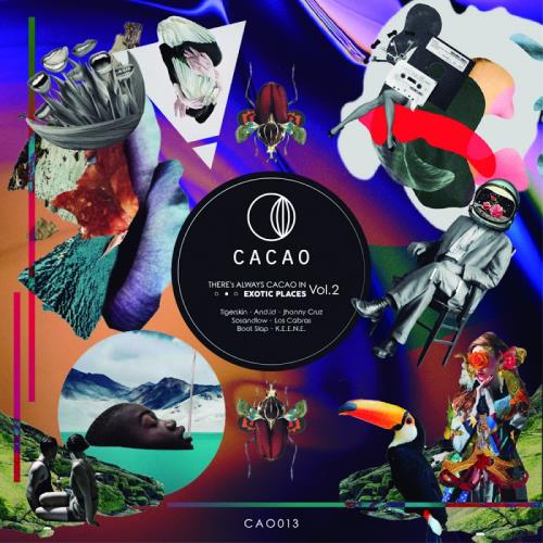 There's Always Cacao In Exotic Places, Vol. 2 (20 ...