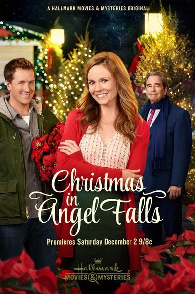 download Christmas.in.Angel.Falls.2017.German.DL.1080p.HDTV.x264-muhHD