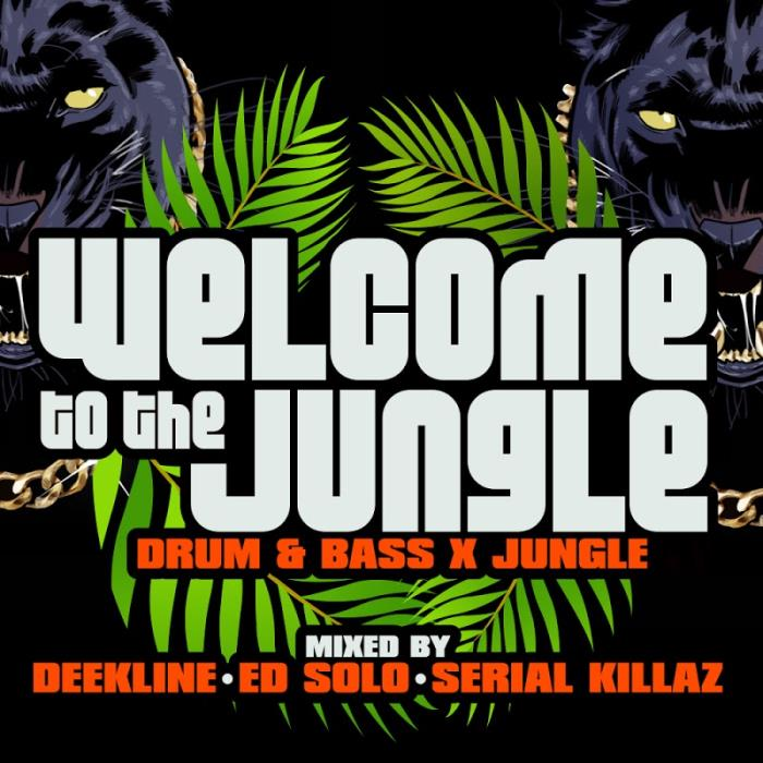 Welcome to the Jungle (Drum & Bass X Jungle) (2018 ...