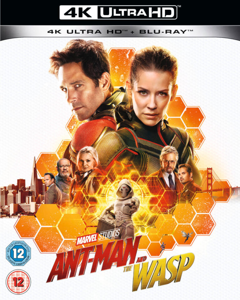 download Ant.Man.and.the.Wasp.2018.German.EAC3.DL.2160p.UHD.BluRay.HDR.HEVC.Remux-NIMA4K