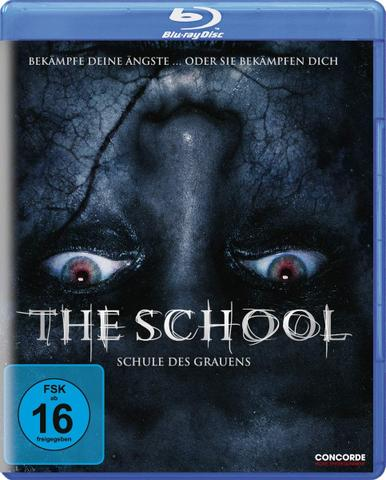 download The.School.Schule.des.Grauens.2018.German.DL.DTS.1080p.BluRay.x264-HQX