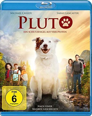 download Pluto.Ein.Schutzengel.auf.vier.Pfoten.2017.GERMAN.DL.1080p.BluRay.x264-UNiVERSUM