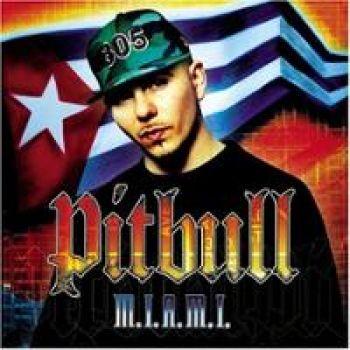 PITBULL MIX