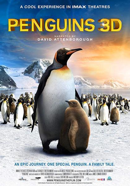 download Ein.Pinguin.Kommt.Selten.Allein.German.DOKU.HDTVRiP..x264-DUNGHiLL